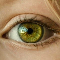 """""""La baja visión tan frecuente como desconocida"""""""